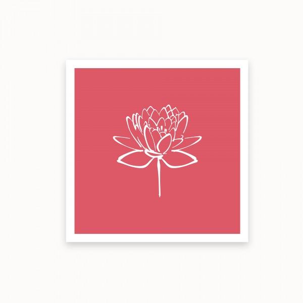 Lotus II | Karminrosa | mirandolo basics