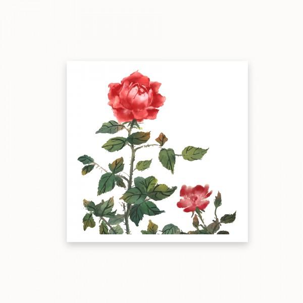 Le Jardin des Roses | mirandolo Le Petit Art