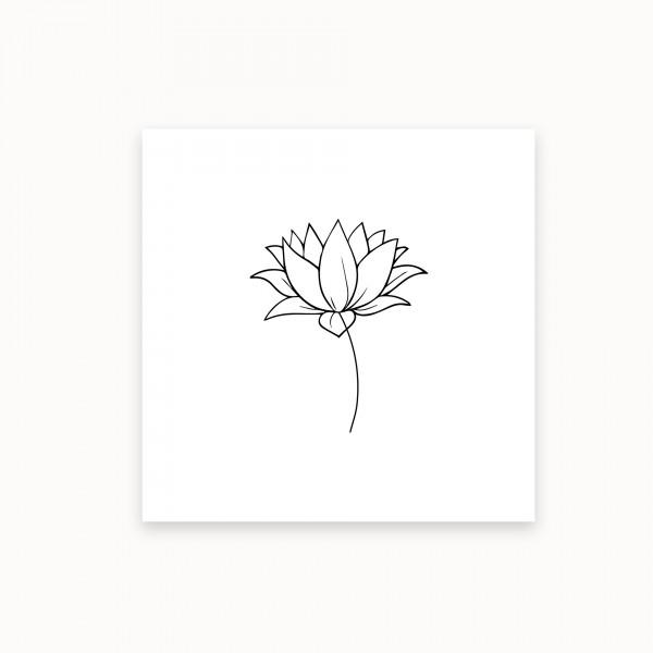Lotus I |Black&White | mirandolo basics