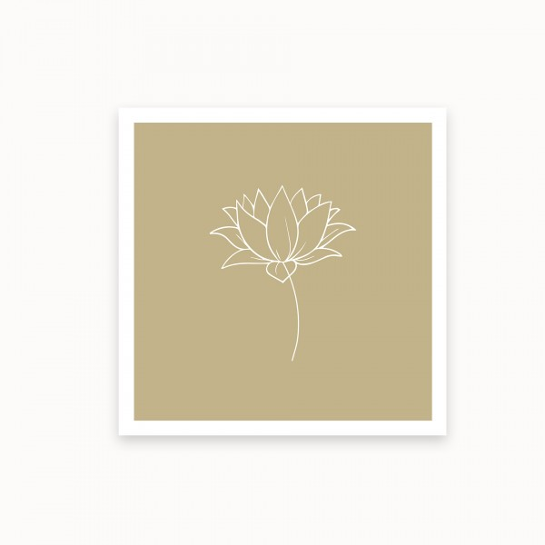 Lotus I | Ecru | mirandolo basics
