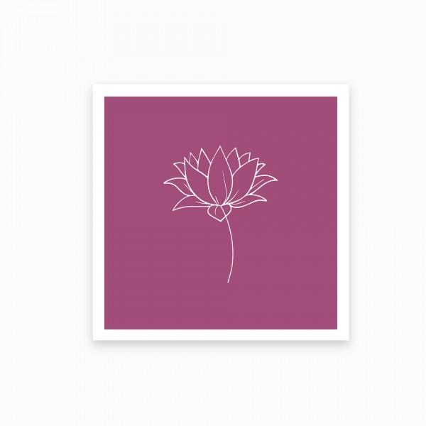 Lotus I | Lila | mirandolo basics